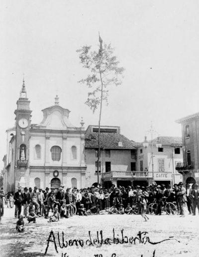 Albero della libertà 1914 Davide Baldrati
